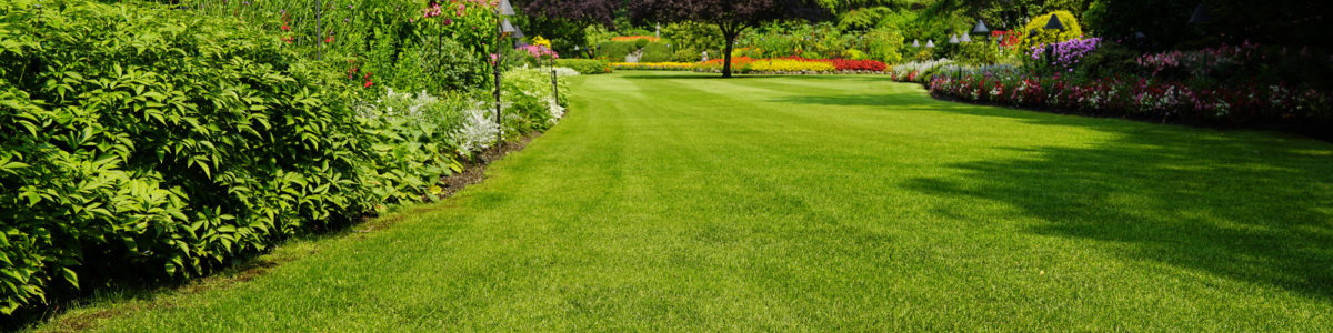 Landscaping Companies West Palm Beach