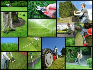 The Top Ten Landscaping and Management Companies in Stuart and Martin County